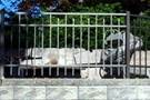 Aluminum Fence Railings In NJ