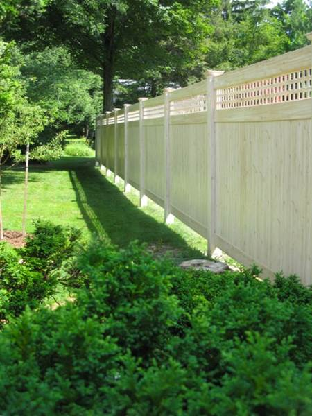 Eastern White Cedar Fencing Lattice Top T Amp G Fence Panels